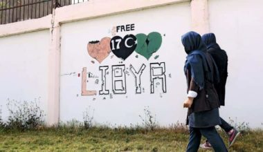 Who Lost Libya