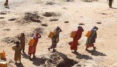 Somalia Hope Springs