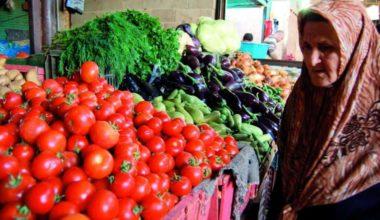 Gaza's Pesky Pesticides